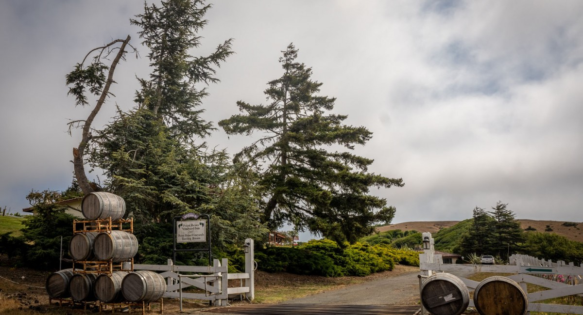 12700 State Route 1, Point Reyes Station, CA 94956 Image #2