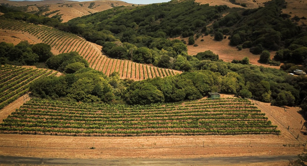 12700 State Route 1, Point Reyes Station, CA 94956 Image #12
