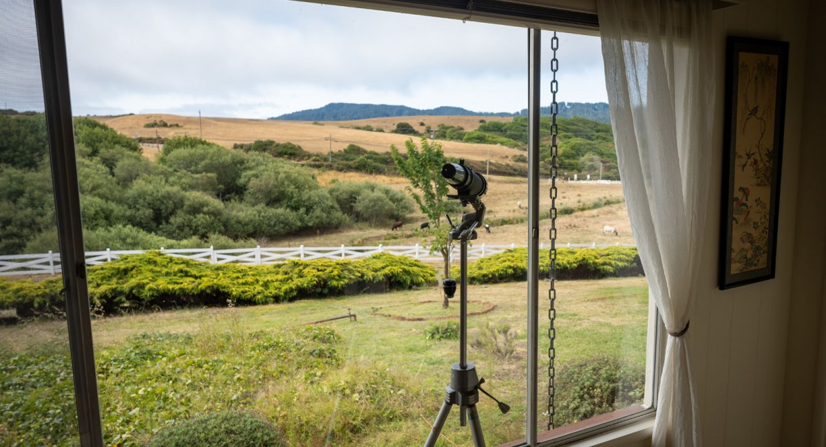 12700 State Route 1, Point Reyes Station, CA 94956 Image #19