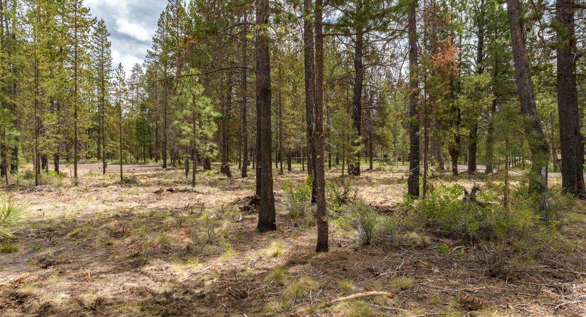 17008 Sharp Drive, Bend, OR 97707 Image #7