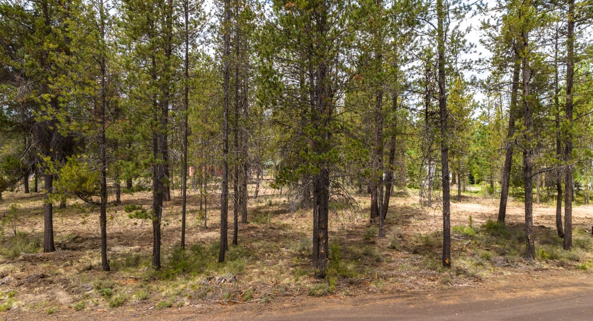 17008 Sharp Drive, Bend, OR 97707 Image #3