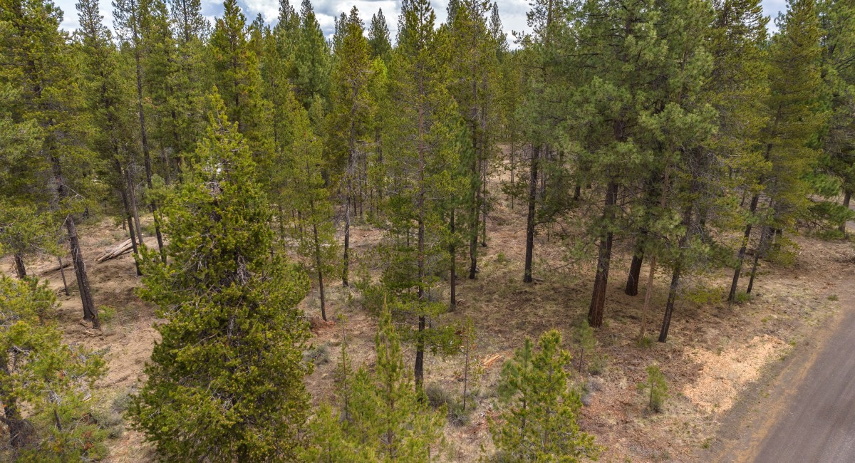 17008 Sharp Drive, Bend, OR 97707 Image #9